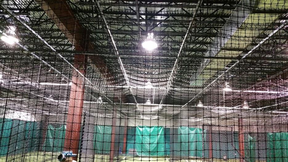 cage1.jpg