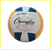 Champion Sports VB Pro Series Volleyball 2
