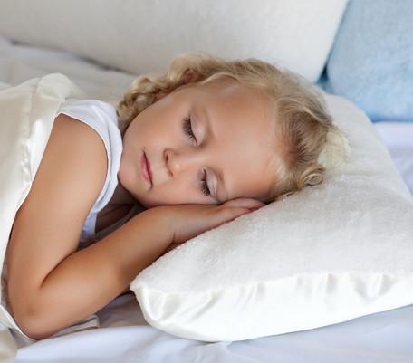 Kids Nap Pillow Plush Amp Silkie Comfort Silkie