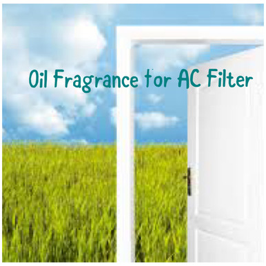 Box x 3 Units of your favorite scent for your A/C Filter