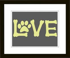 Love your pets and your home