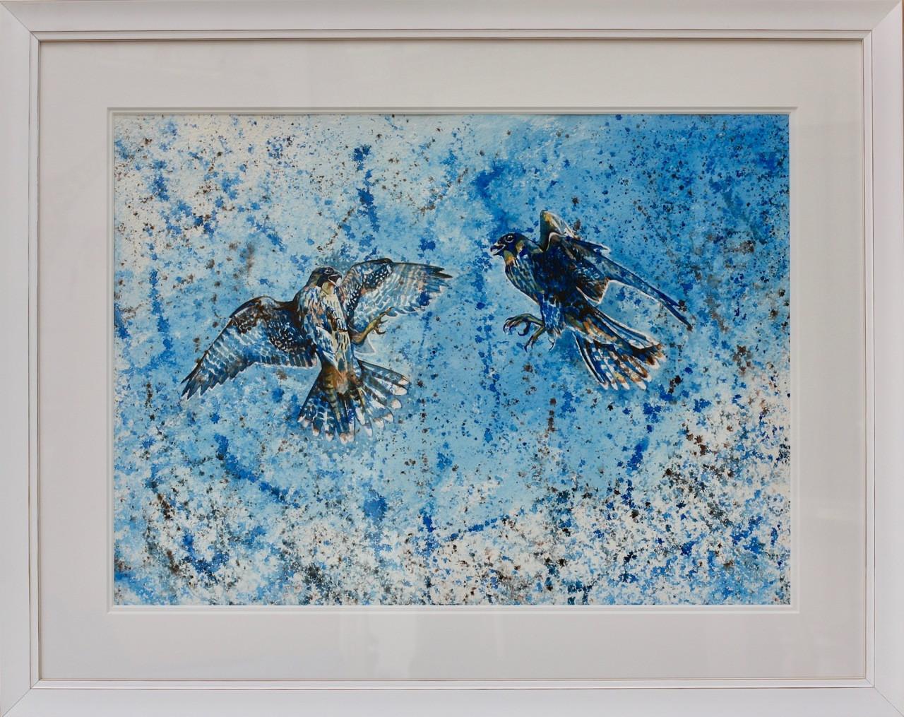 Peregine Falcons framed