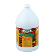 Medina Hasta Gro Plant Food Gal (4)