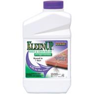 KleenUp 41% Conc. Qt.