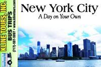 newyorkhm-auction.jpg