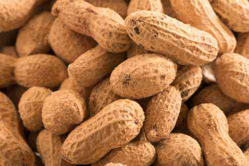 Salted in the shell jumbo Virginia peanuts. All Natural!