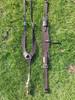 "Dark Brown Pulling Collar/Flank Cinch set matches the Colorado Springs ""Denver"" treeless saddle"