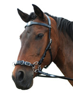 """Caval"" Bitless Hackamore doubles as a training Cavesson"