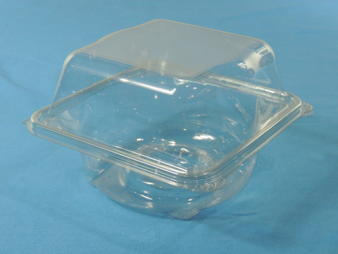 Hinged Clear Hydroponic Lettuce Container