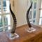 As Shown: Genuine Blesbok Horn Sculpture Size: 18 H inches (each is unique, please allow for variation) Material: Genuine Blesbok Horn on Acrylic Base
