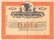 Delaware Rayon Company stock certificate circa 1926