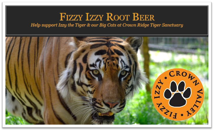 Izzy the Tiger from Crown Point Tiger Sanctuary