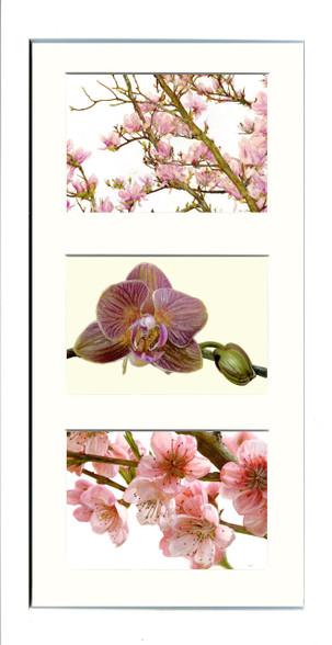 White Framed Triptych (Three 6x4 inch prints)