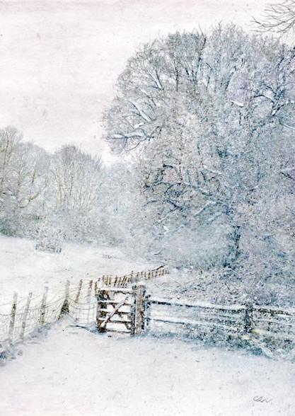 Winters Walk Seasonal Card