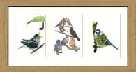 Oak Effect Framed Triptych (Three 4x6 inch prints)