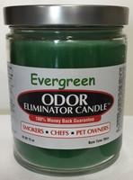 Evergreen Odor Eliminator Candle