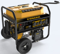 Firman P08003 Portable Gas  8000/10,000 Watt w/Remote Electric Start