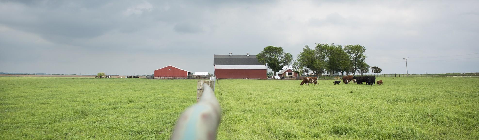 Hasselmann Farm