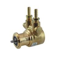 Rotary vane pump, Procon/Fluid-o-Tech Pump 100 GPH