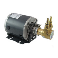 75 GPH Pump and Motor Assembly (complete with fittings and clamp)
