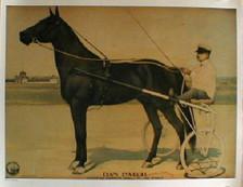 Dan Patch race horse print