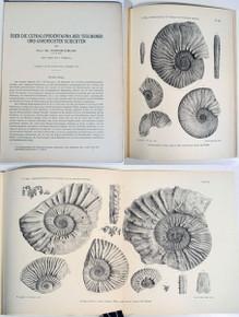 Rare Paleontology Book: Uhlig, Victor; Über die Cephalopodenfauna der Teschener und Grodischter Schichten. 1902