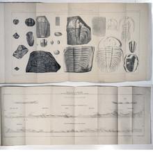 Rare Geoscience Book: Barrande, Joachim; Documents Anciens et Nouveaux sur la faune primordiale et le Système Taconique en Amérique. 1861. Book 44-D