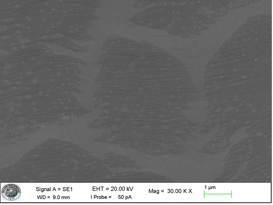 nanografi-cvd-graphene-monolayer-graphene-on-sio2-si-substrate-sem-image.jpg
