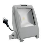 Mercator Napier 50w 5500K LED Flood Light Silver