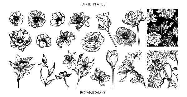 Dixie Plates Botanicals mini stamping plate. Available in the USA at www.lanternandwren.com.