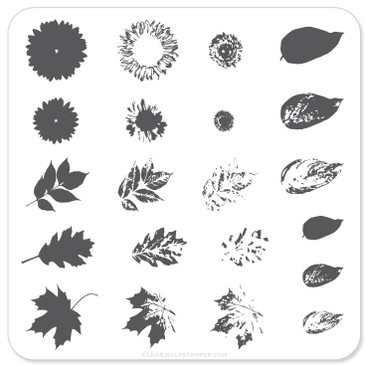 Clear Jelly Stamper Sunflower and Leaves (CjS-26) nail stamping plate, available at www.lanternandwren.com.