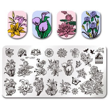 Born Pretty BP-L067 nail stamping plate! Free USA shipping available.