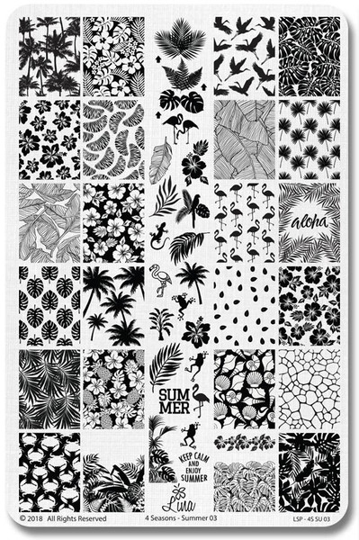 Lina Summer 03 nail stamping plate, available at www.lanternandwren.com.
