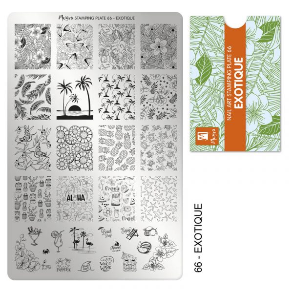 Moyra Exotique stamping plate, #66. Available at www.lanternandwren.com.