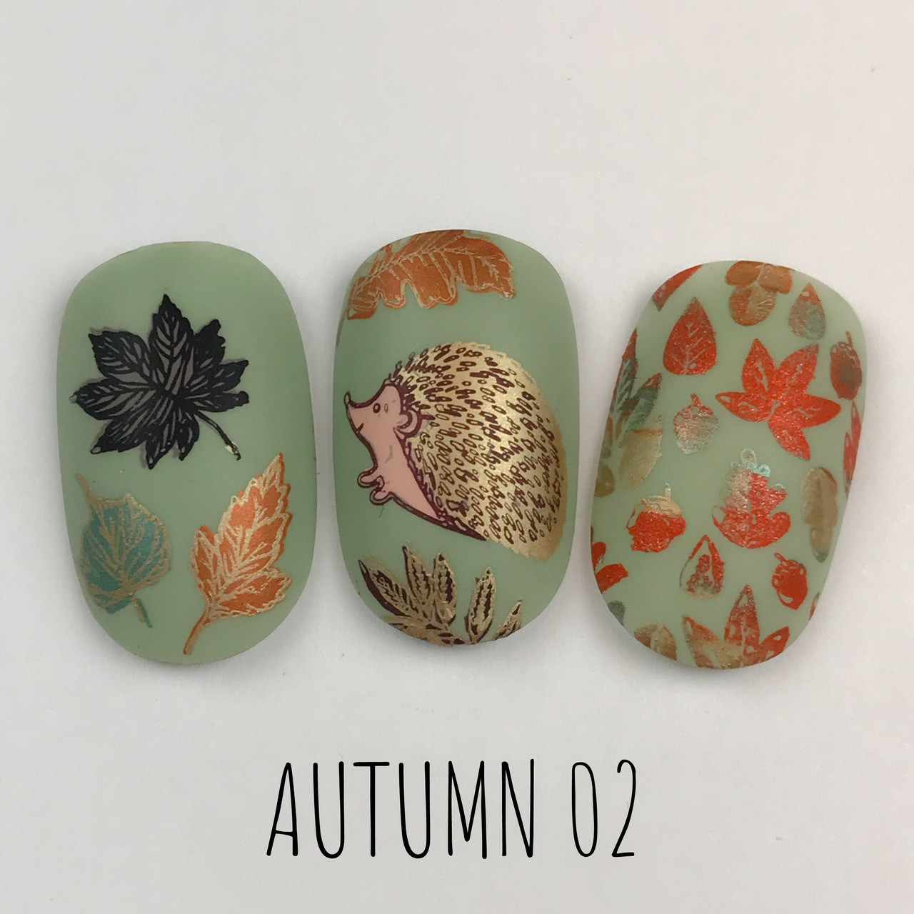 Dixie Plates Autumn 02 nail stamping plate. Available at www.lanternandwren.com.