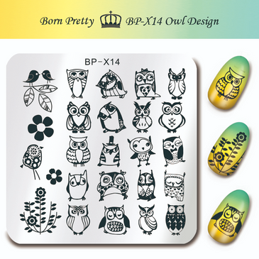 Born Pretty BP-X14 nail stamping plate. Get yours without the wait, already in the USA at www.lanternandwren.com.