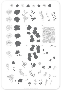 Clear Jelly Stamper Sketched Garden (CjS-82) Nail Stamping Plate. Available in the USA at www.lanternandwren.com.