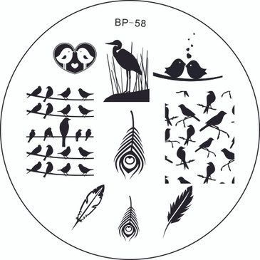 Born Pretty BP58 - Birds Nail Stamping Plate - Bird, Feather Images