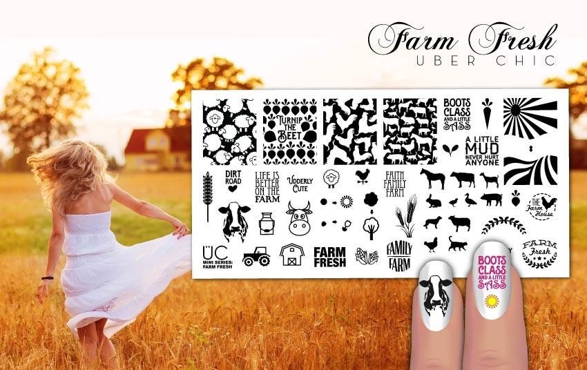 Uber Chic Farm Fresh nail stamping plate. www.lanternandwren.com