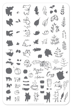 Clear Jelly Stamper Pumpkin Spice Autumn stamping plate, available in the USA at www.lanternandwren.com.