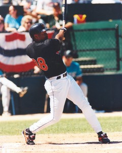 Albert Belle 8 x 10 color photo