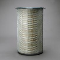 Donaldson P607263 Air Filter
