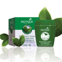 Biotique Winter Green Spot Correcting Anti-acne Face Cream
