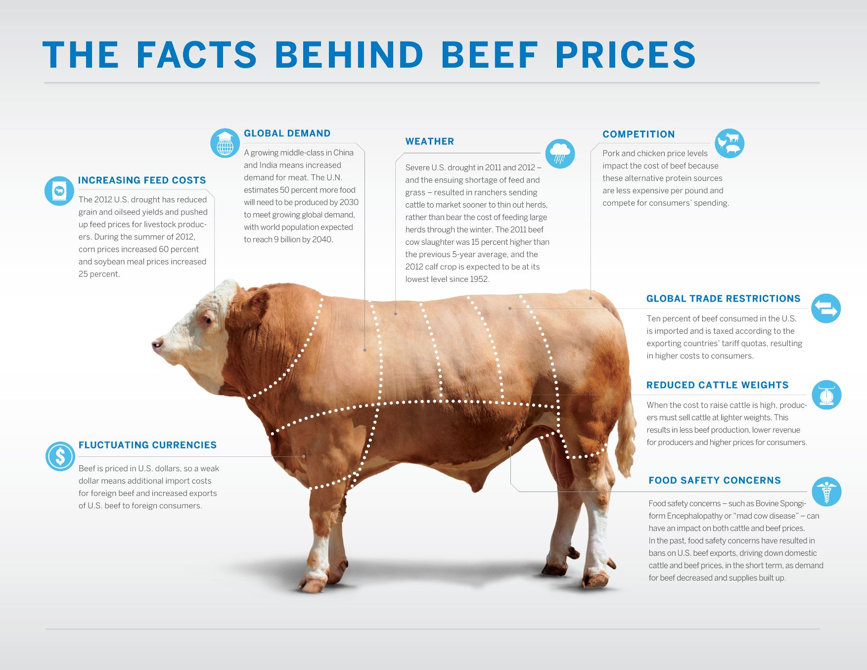 infographic-facts-behind-beef-prices.jpg
