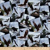 Bald Eagles- Fabric for special needs bibs