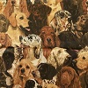 Real Dogs- Fabric for special needs bibs