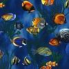 Bermuda Fish- Fabric for special needs bibs