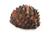 Fake Pine Cone Devious Geocache Container