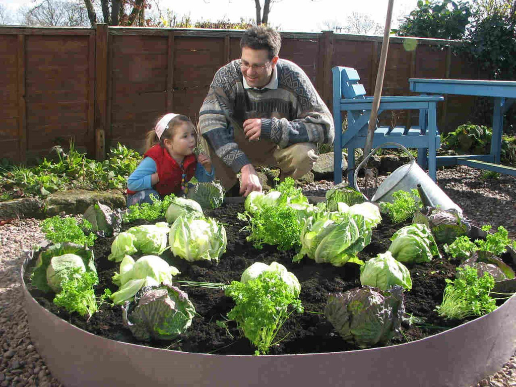 Planting a raised bed