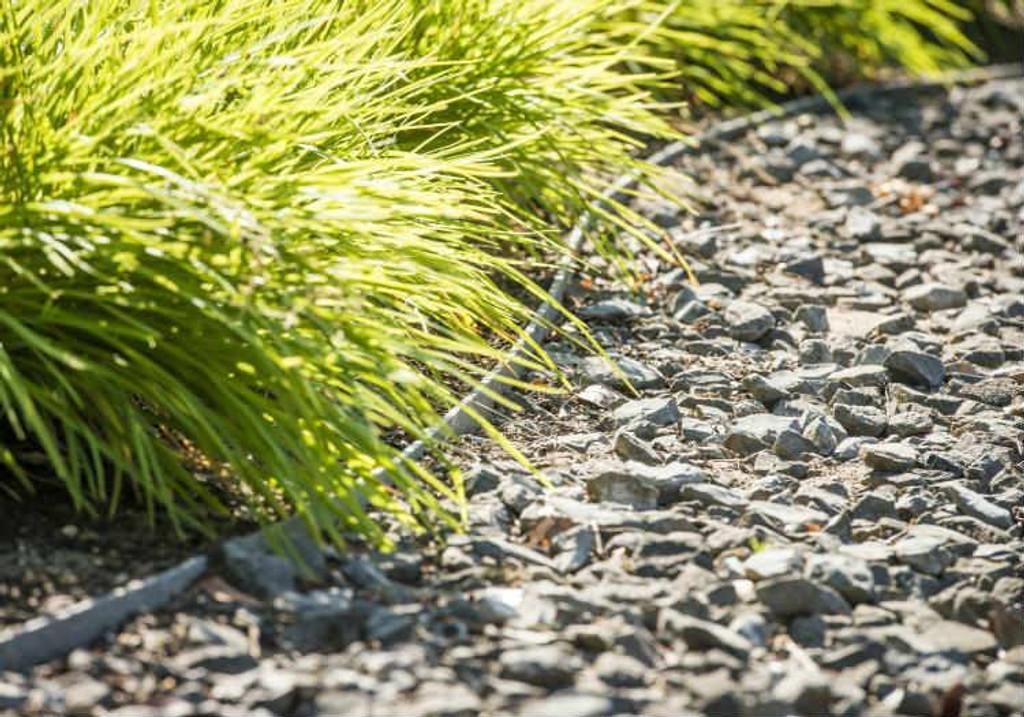 Garden Path Edging